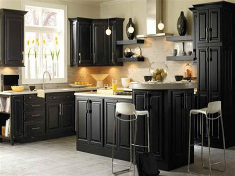 What Color To Paint Kitchen Cabinets With Black Appliances Kitchen Cabinet Paint Colors Ideas 2016