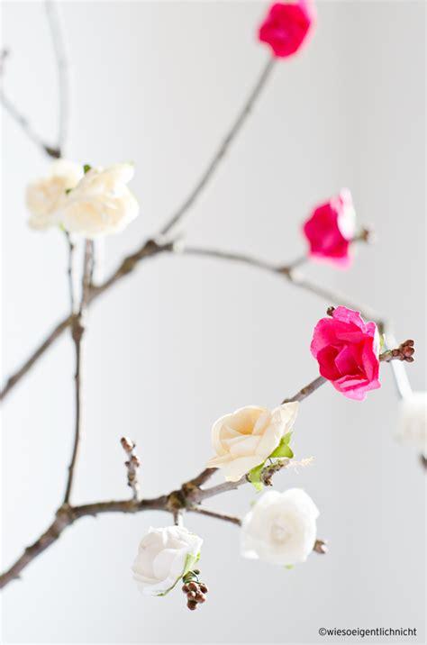 wann pflanzt krokusse wiesoeigentlichnicht at home oder auch flower