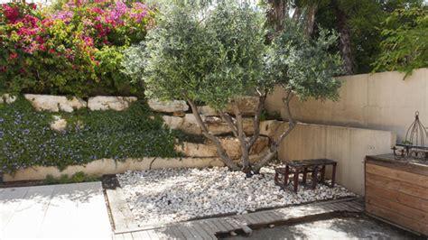 mediterranen garten anlegen idee mediterran terrasse