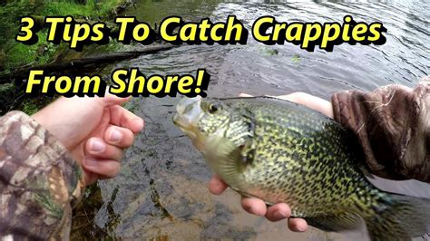 crappie fishing tips guaranteed  catch crappies