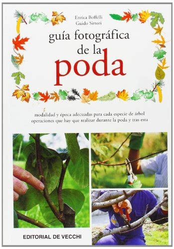 libro la poda pruning leer libro gu 237 a fotogr 225 fica de la poda descargar libroslandia