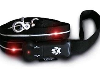 visiglo lighted leash smart leash