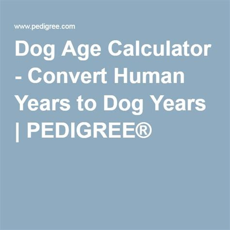 convert human years to years 17 best ideas about age calculator on year calculator years and boys