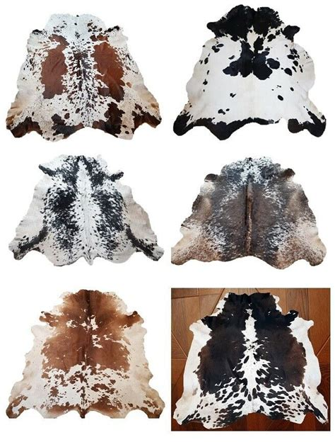 Cowhide Leather Rug by New Large 100 Cowhide Leather Rugs 132x137 Cm Cow Hide