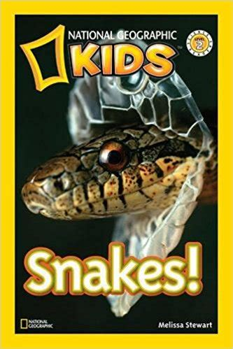 slithering snake books 20 creepy crawly snake books nourishing my scholar