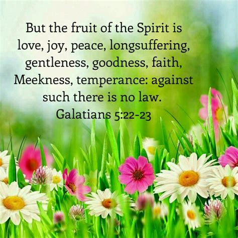 7 fruits of the spirit kjv galatians 5 22 23 kjv bible verses my verses