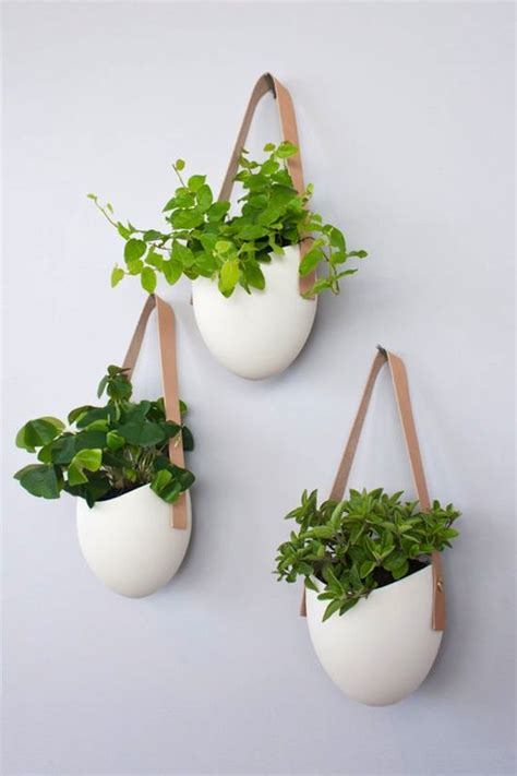 plant wall hangers indoor best 25 wall planters ideas on pinterest natural framed