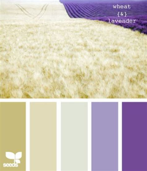 lavender color scheme wheat lavender color schemes pinterest