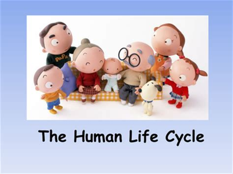 vida 3 0 life 3 0 being human in the age of artificial intelligence spanish edition the human life cycle powerpoint resources tes