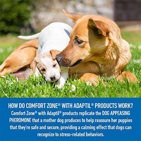 comfort zone dog comfort zone adaptil spray for dogs 60 ml for dog