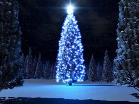 los 10 arboles de navidad mas raros del mundo mimind s blog
