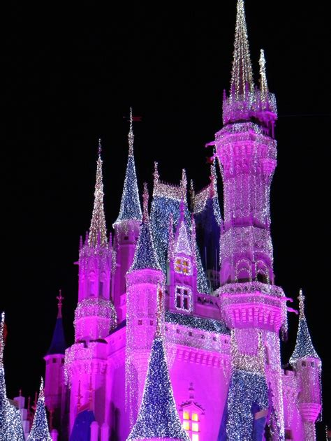 Pin By Lavon Barber On For My Little Princesses Pinterest Disney World Castle Lights