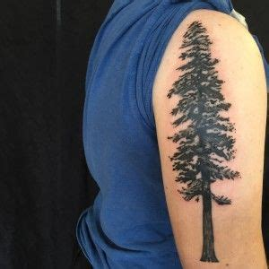temple tattoo oakland instagram 17 best images about trees tattoo on pinterest trees