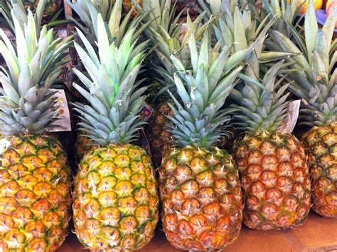 new year pineapple decoration 187 pineapples june gant ms rd