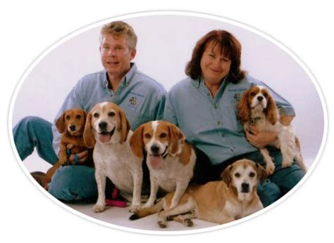 creature comforts pet care creature comforts pet care llc