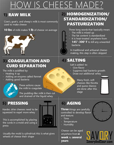 how is cheese made infographic updated savory and sour