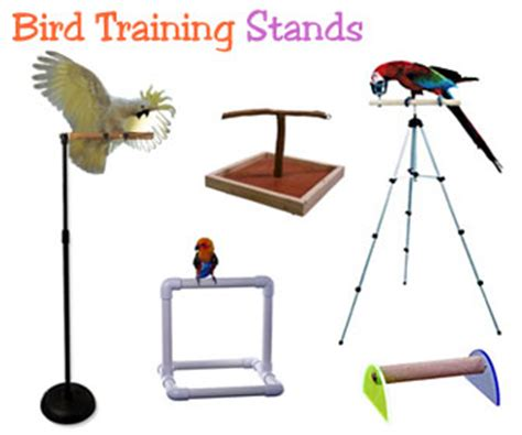 Expandable Table perch factory parrot training stands bird t stand perches