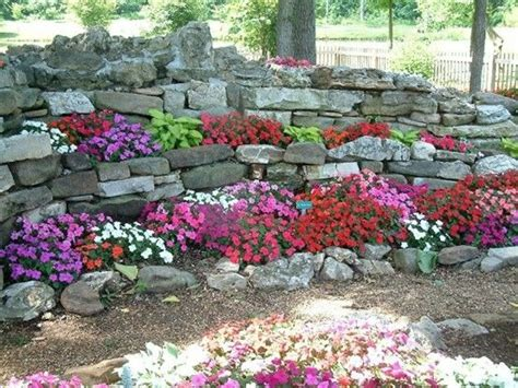 Rock Garden Plants For Shade Shade Plants In A Rock Garden Gardening Pinterest
