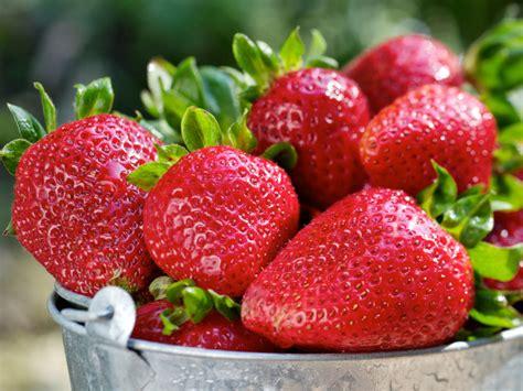 fruits u should buy organic the dozen foods gallery foods you should always