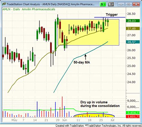 swing trading newsletter reviews 8 gain on amln technical review of recent swing trade