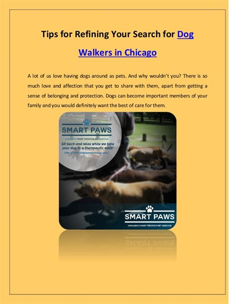 Search For In Chicago Tips For Refining Your Search For Walkers In Chicago