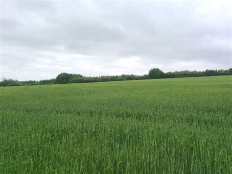 The Land Of why secure huxhams cross farm land in trust biodynamic