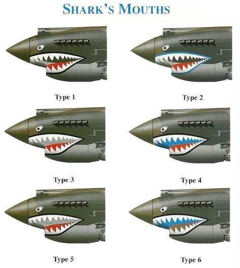 WWII P 40 Warhawk Shark Mouth Types this is for you John