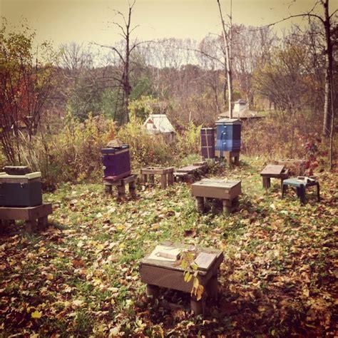 Backyard Honey Bees by Overland Honey Bee Yard Honey Bees