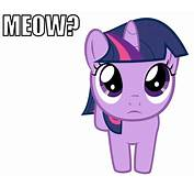 Image  Silly Twilightgif My Little Pony Fan Labor Wiki