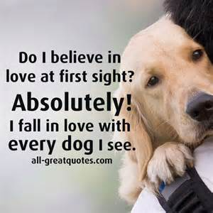 Do You Believe In At Sight Essay by Essay On Do You Believe In At Sight