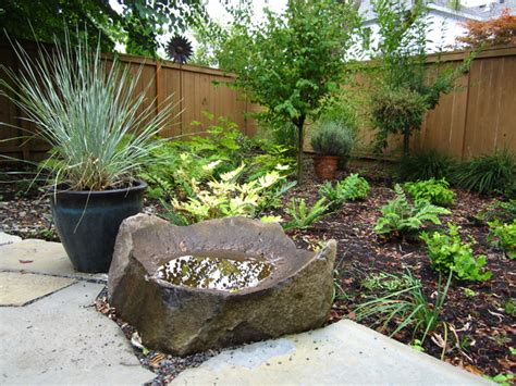 modern cottage shade garden with plants and