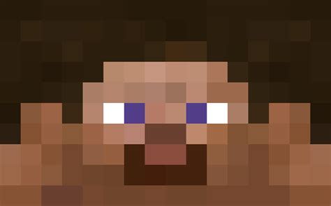 minecraft steve face minecraft gaming party