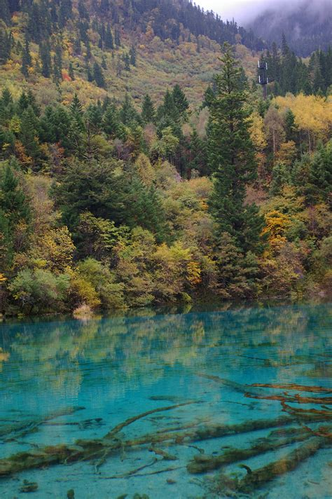 clearest lake in china facts free stock photo of cyan blue lake surrounded by trees photoeverywhere