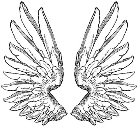 tattoo flash wings wings tattoo 47 gif 640 215 583 wings tattoo design
