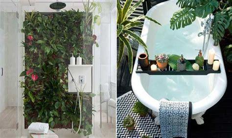 flores para decorar o banheiro plantas e flores na decora 231 227 o do banheiro veja como usar