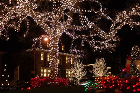 a slice of brooklyn bus tours christmas lights cannoli