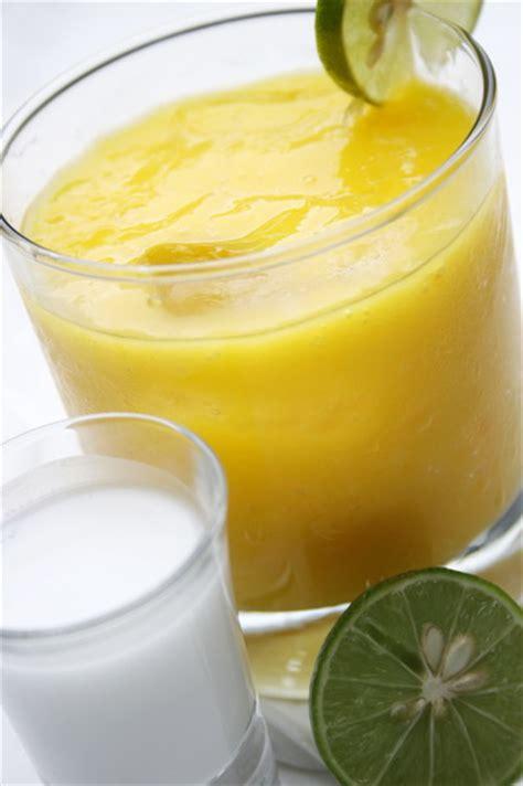 cara membuat yoghurt untuk diet cara membuat smoothies untuk diet sehat bomanta