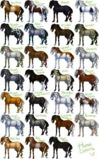 color of horses 1000 images about color chart on