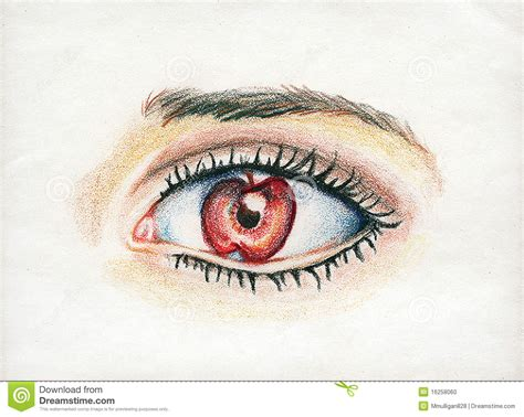 apple of my eye apple of my eye stock illustration image of lashes real