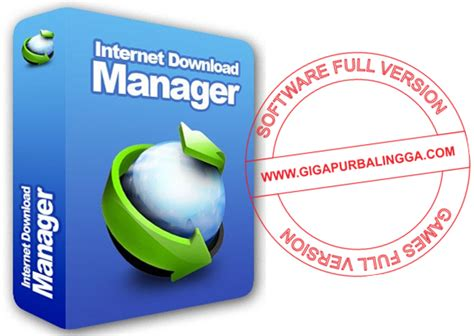 idm 6 19 full version with patch free download idm 6 19 build 7 final full patch gigapurbalingga
