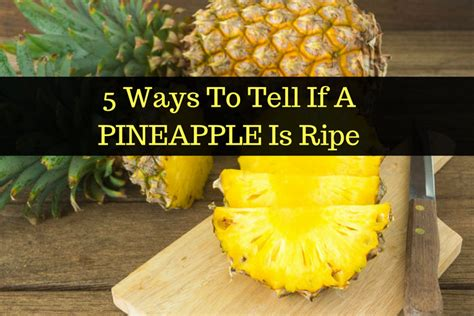 how to tell how a is how to tell if a pineapple is ripe and ready to eat