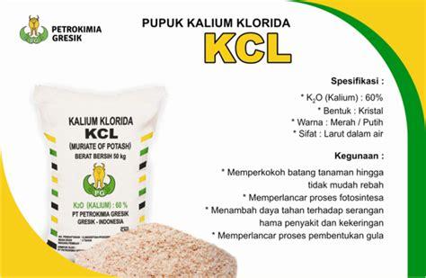 Harga Pupuk Npk Mutiara Sawit kcl petro pupuk urea npk tsp kcl organik rock phospat dll