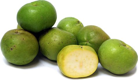 fruit sapote sapote information recipes and facts