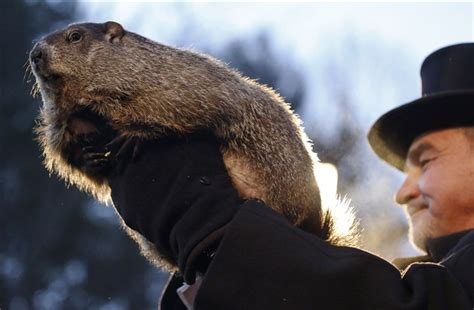 true meaning of groundhog day no shadow punxsutawney phil predicts early