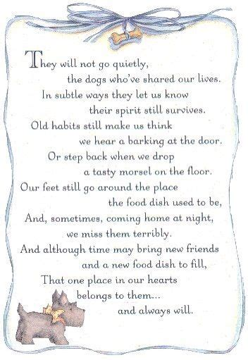 loss of pet words of comfort pet loss just over the rainbow bridge is a place that