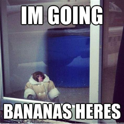 ikea monkey meme continues barnorama