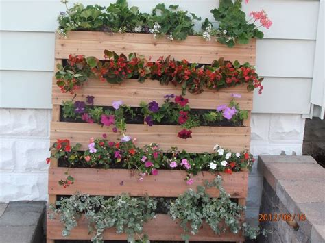 giardini verticali fai da te giardino verticale fai da te progettazione giardini