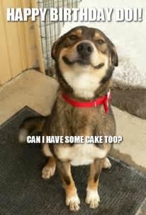 Pics photos happy birthday funny dog meme funny birthday memes