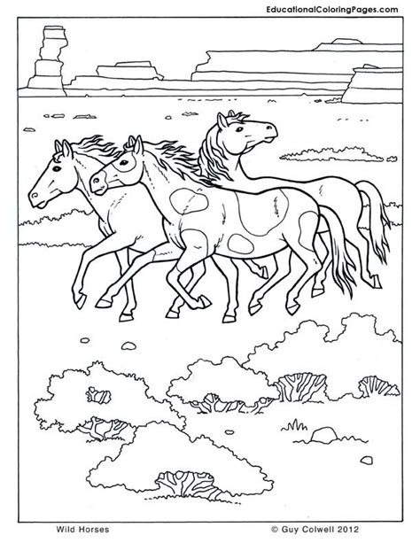 educational coloring pages pdf mammals coloring educational fun kids coloring pages and