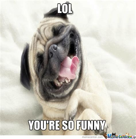 Laughing Meme - laughing dog by pr0spect meme center